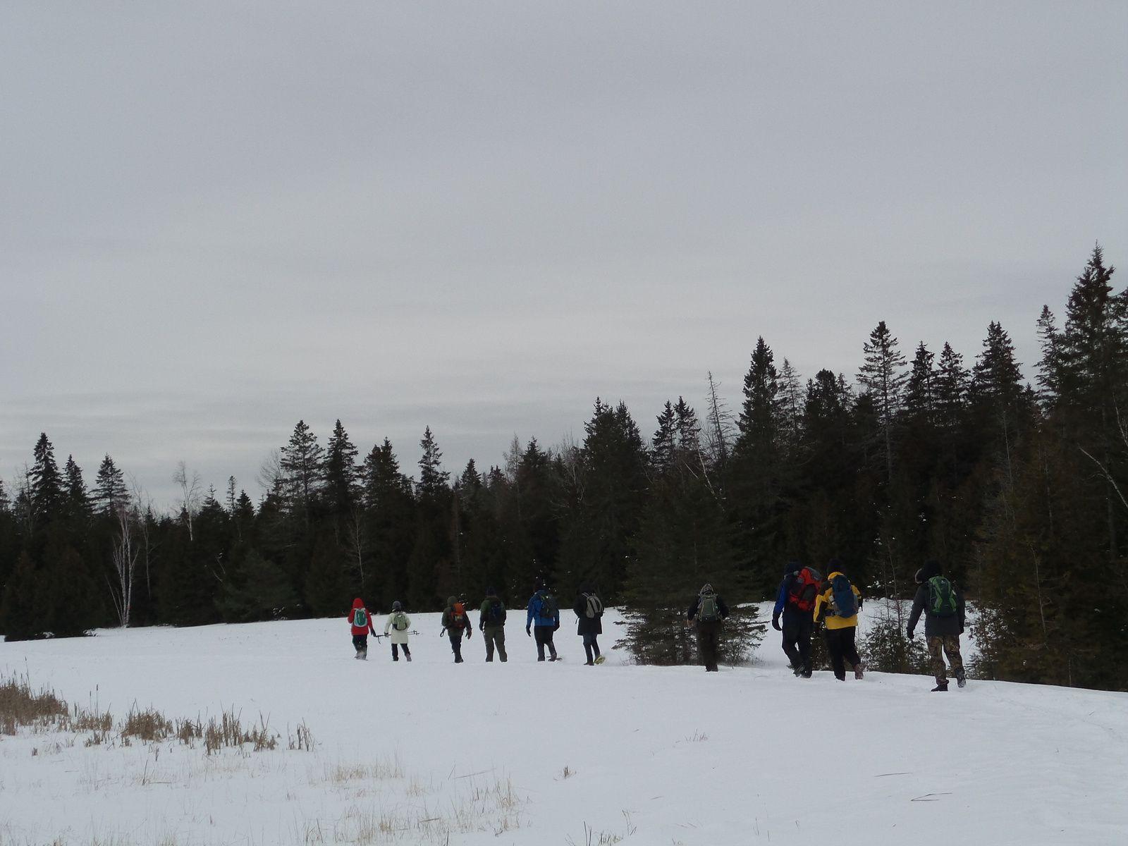 Mes premiers pas sur le Rideau Trail par un froid polaire