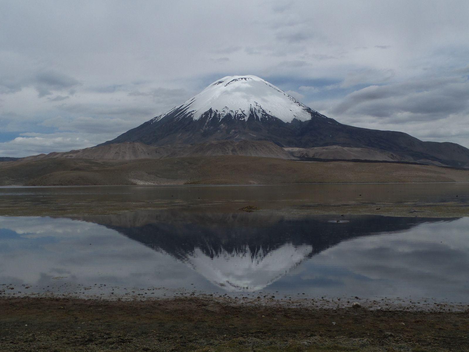 Lac Chungara avec vue sur le volcan Parinacota à 6350 m