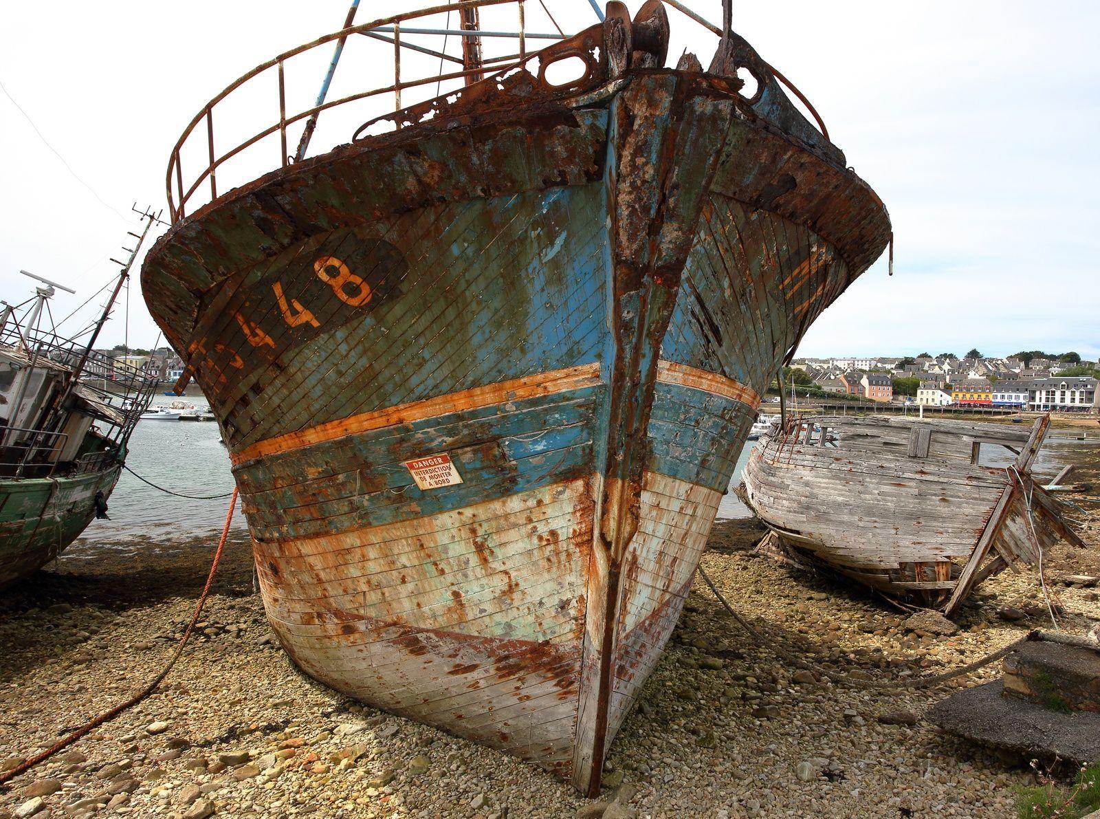 Camaret sur mer  (presqu'île  de Crozon ).