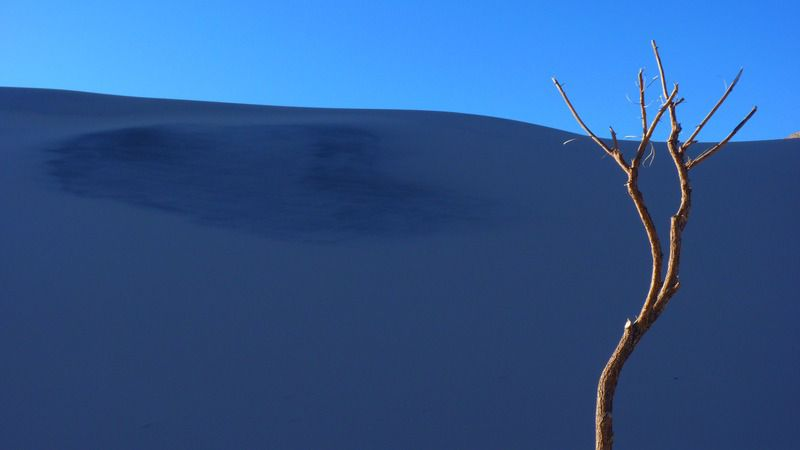 Dune blanche...