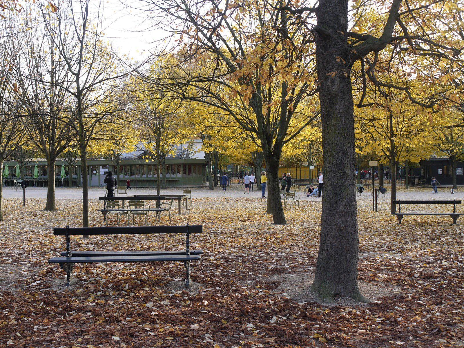 {Paris} Instantanées d'automne