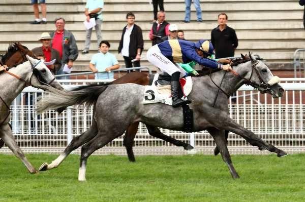 Quinté dimanche à Longchamp : Wyck Hall, la bonne note