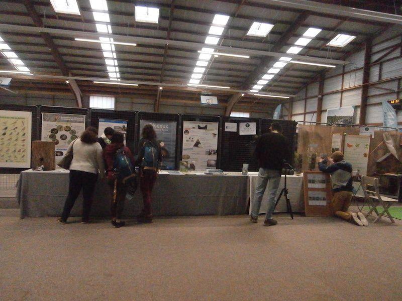 Ensuite c'est le stand GEOCA (Groupe d'étude des Oiseaux des Côtes d'Armor)...