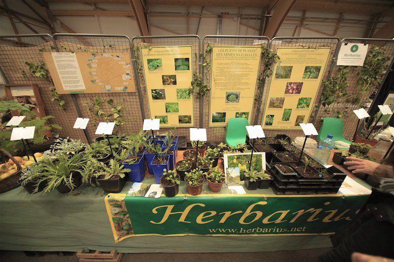 "Voici maintenant le stand ""Herbarius"" de Florence GOULEY."