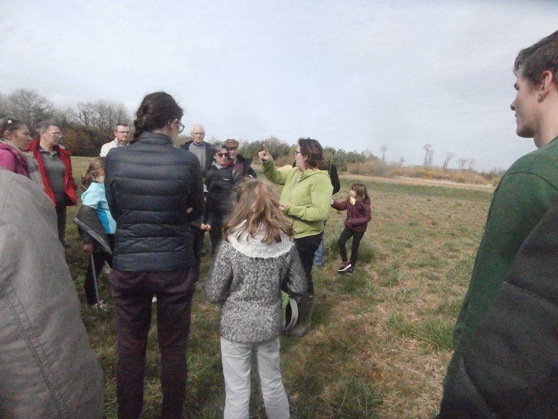 Notre guide nous explique la formation de la mer des faluns...