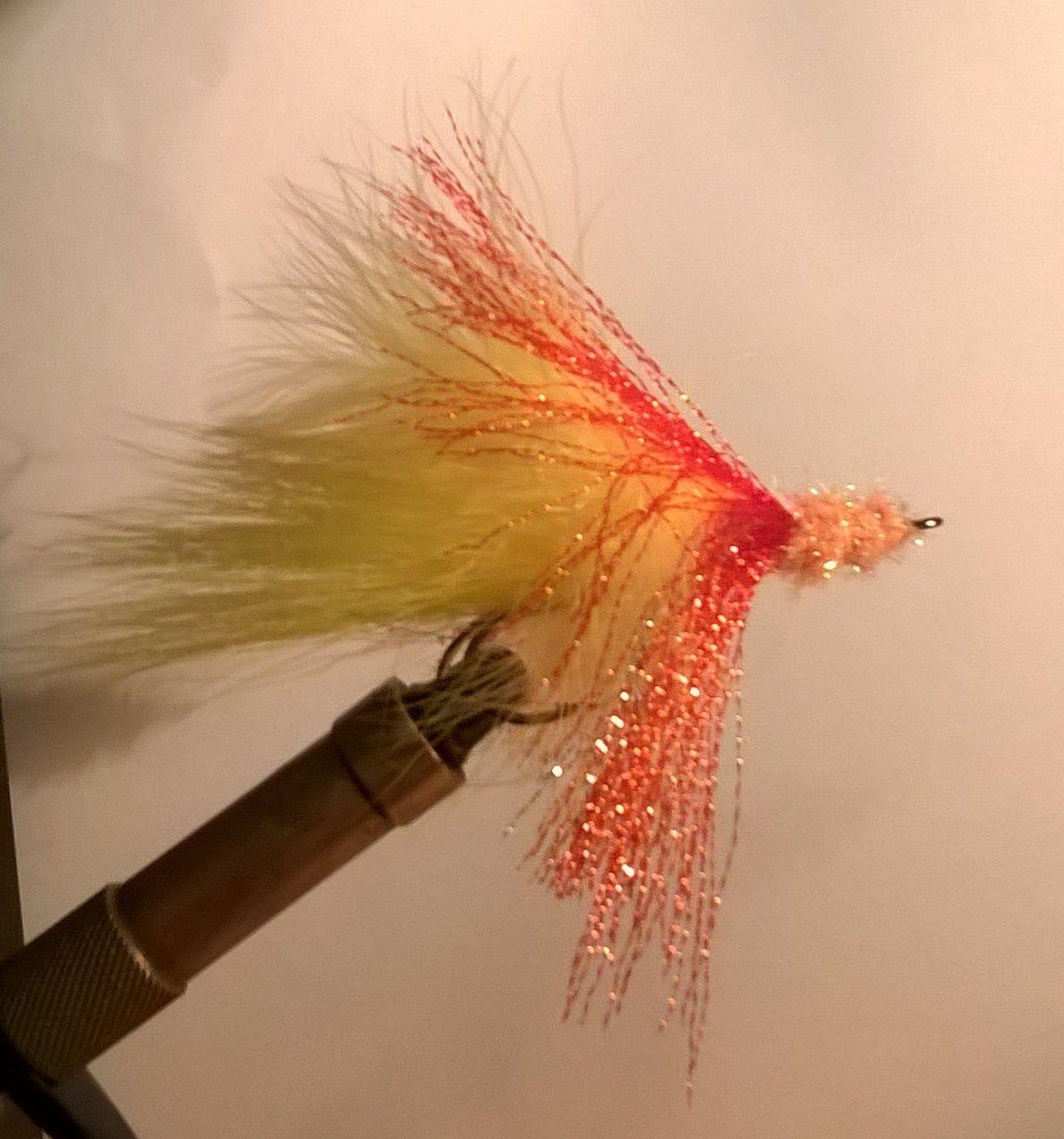 Ma petite contribution sur Raise Fishing !