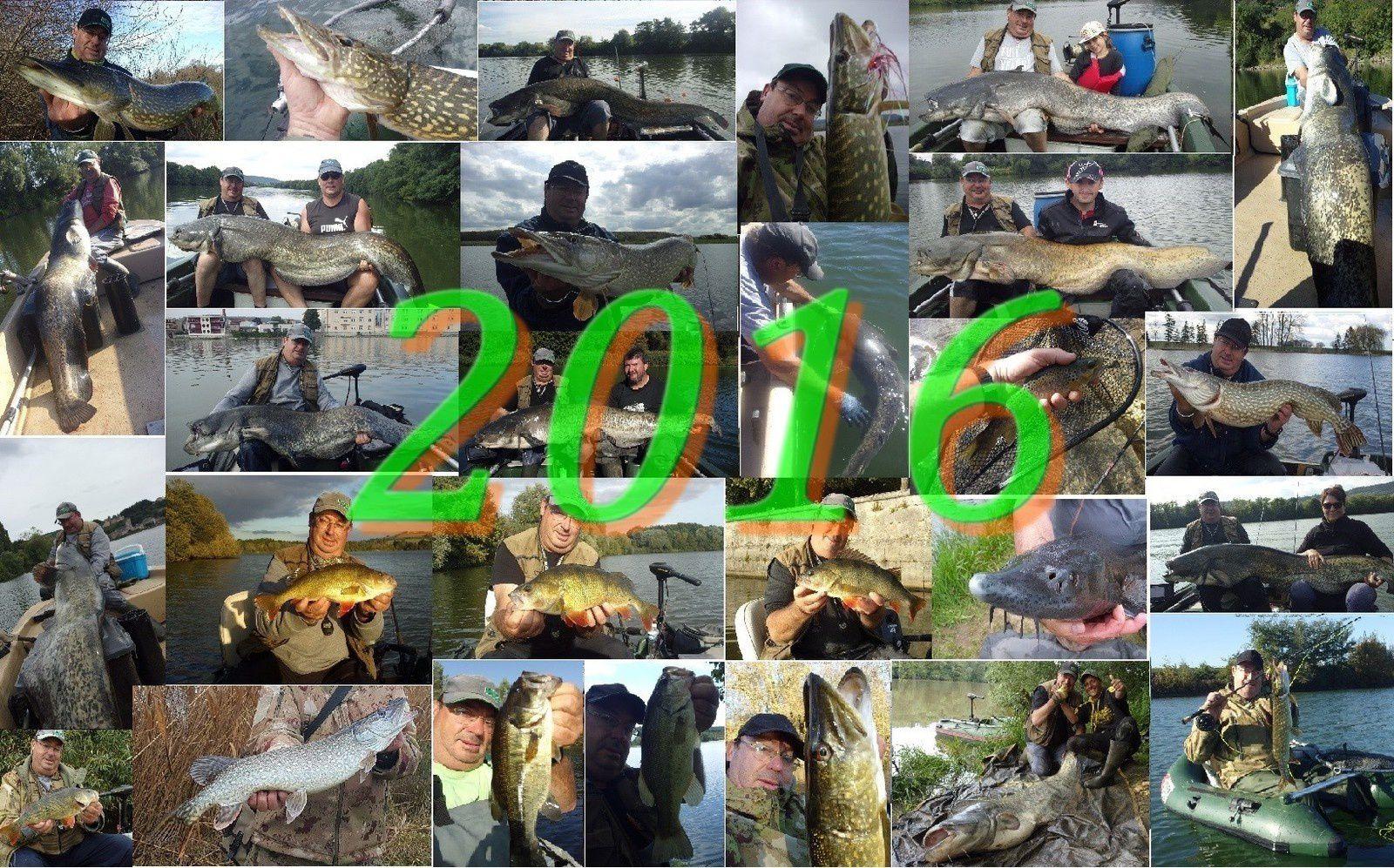 Bye bye 2016, bienvenue 2017 !