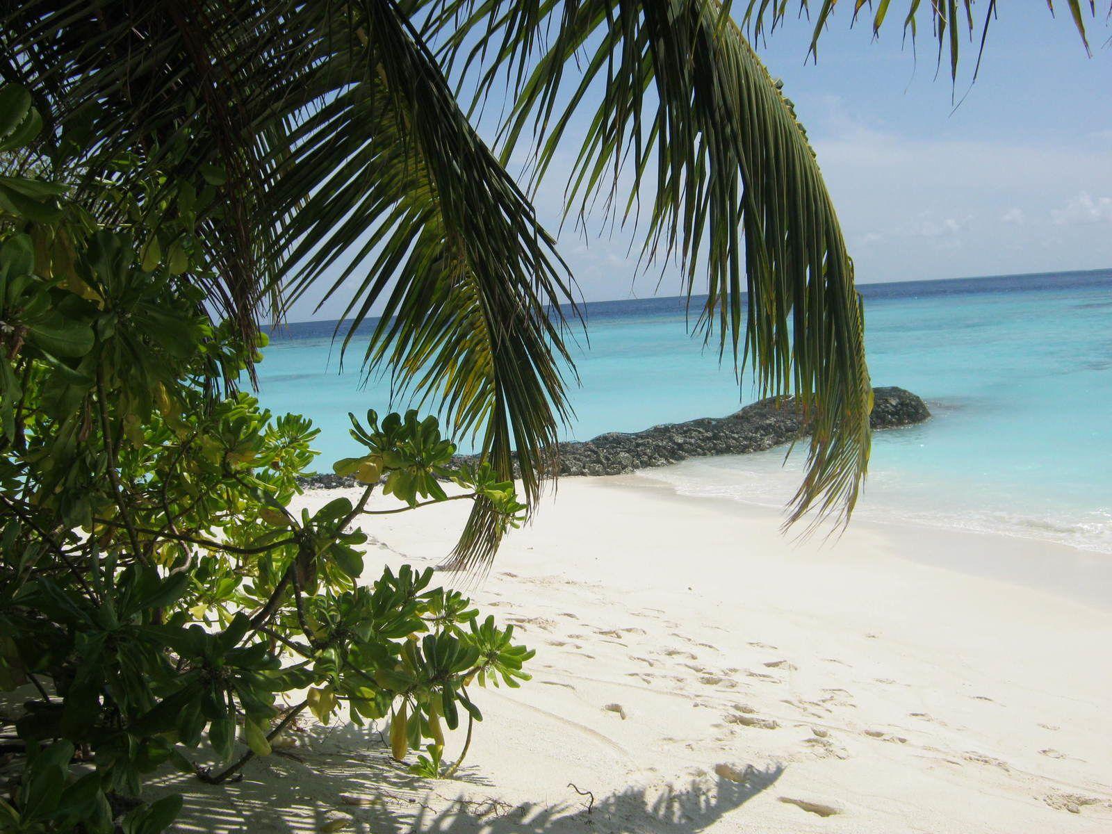 Les Maldives, super trop joli. Nous passerons sous silence les circonstances de ce voyage. Juste un conseil, réservez un hotel avant de partir, ne PAS partir aux Maldives en mode sac à dos.