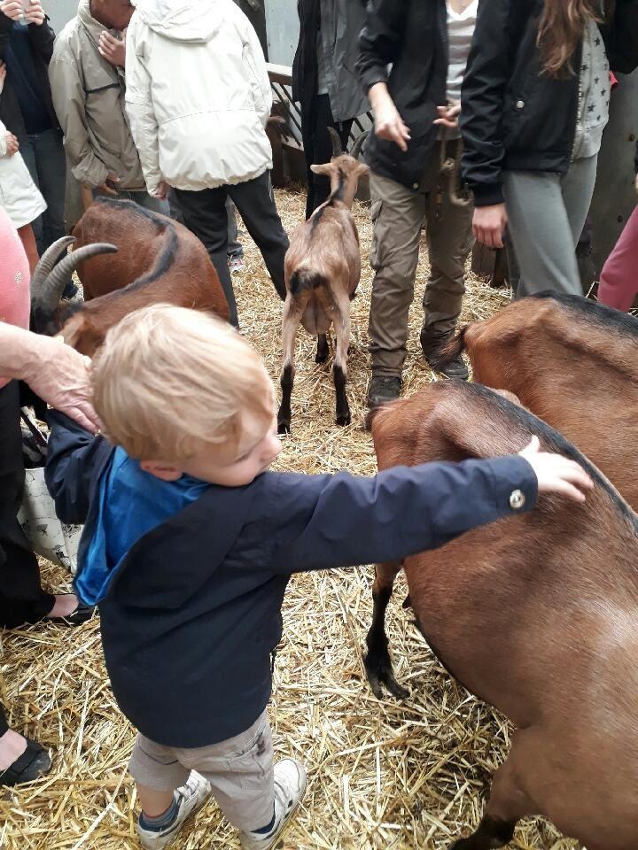 Visite d'une ferme pour Bouilld'amour et Biscotte