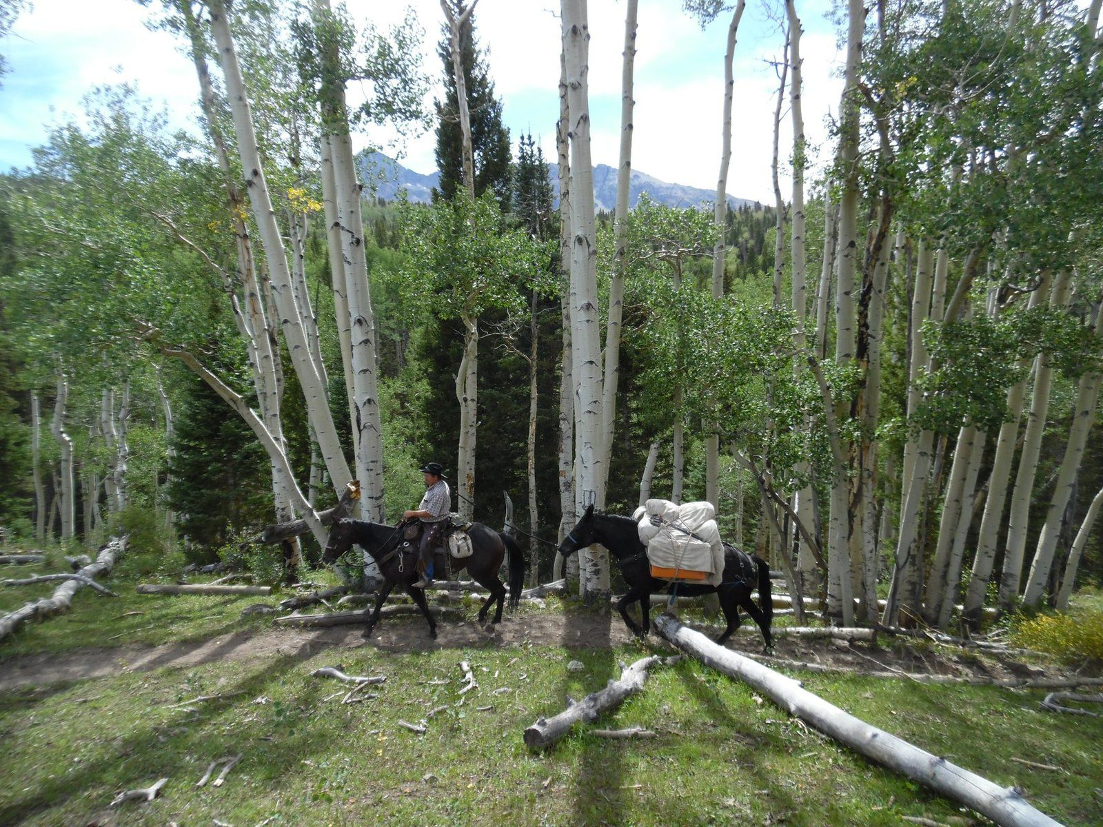 UTAH Horseback riding tour and vacations with Shane Stratton