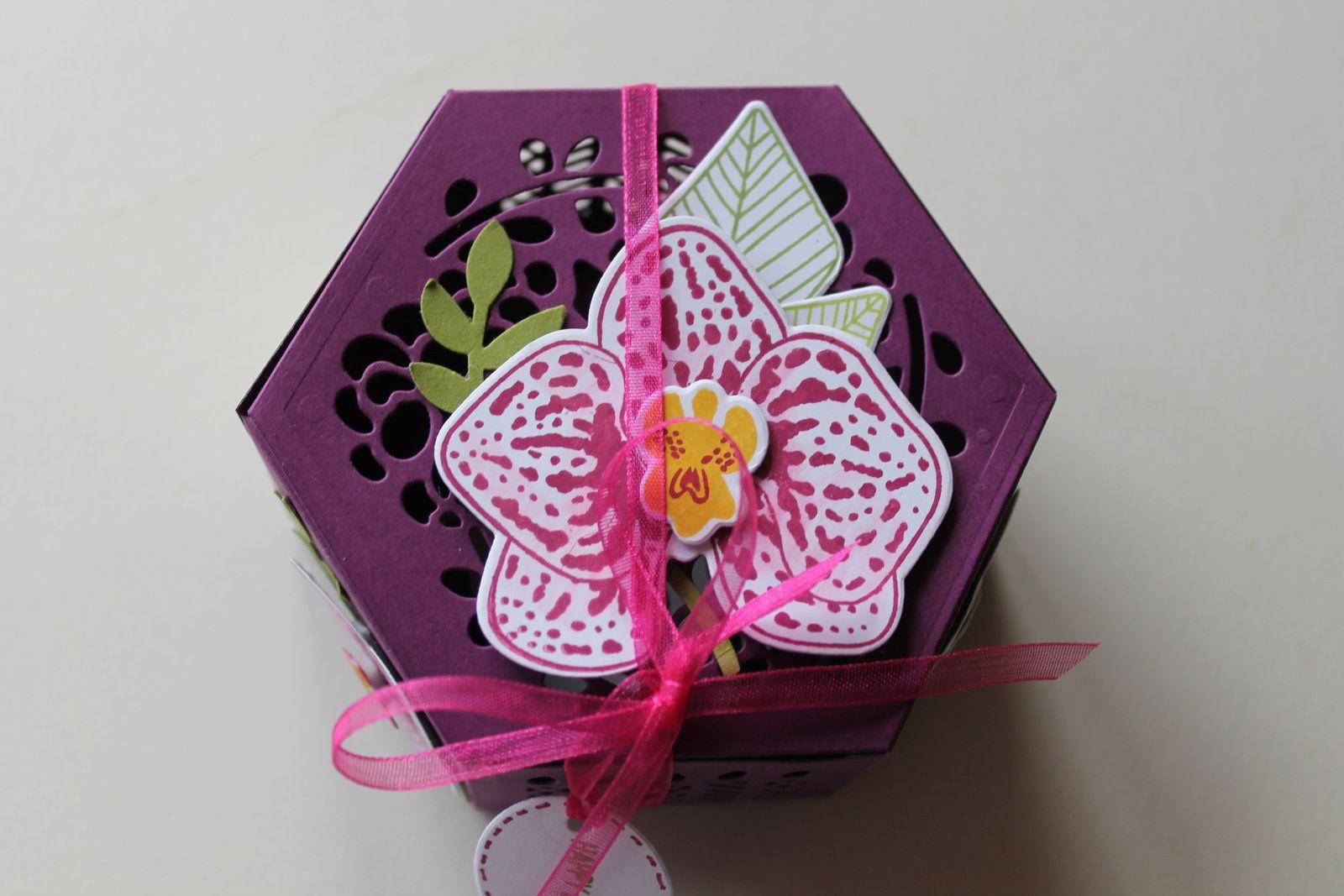 Pétales d'orchidées pour l'anniversaire d' Annette