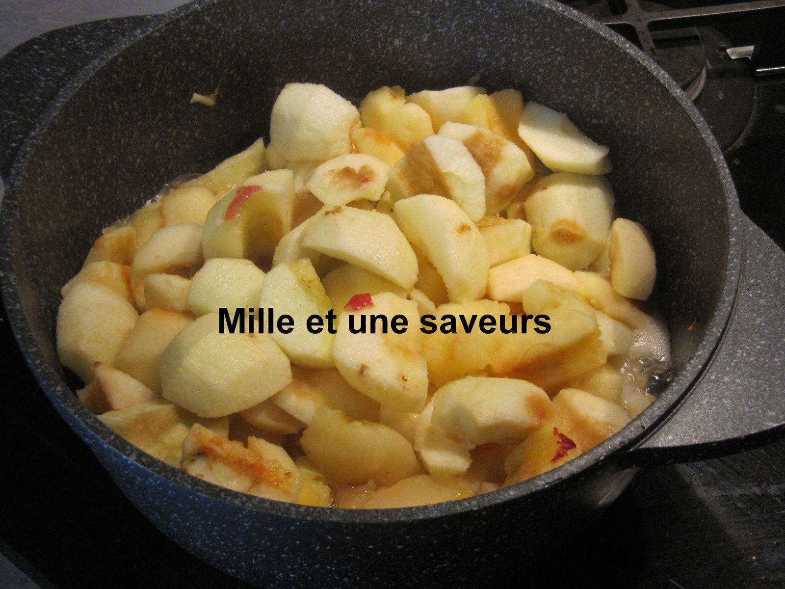 Compote de pommes maison stérélisée au cookéo
