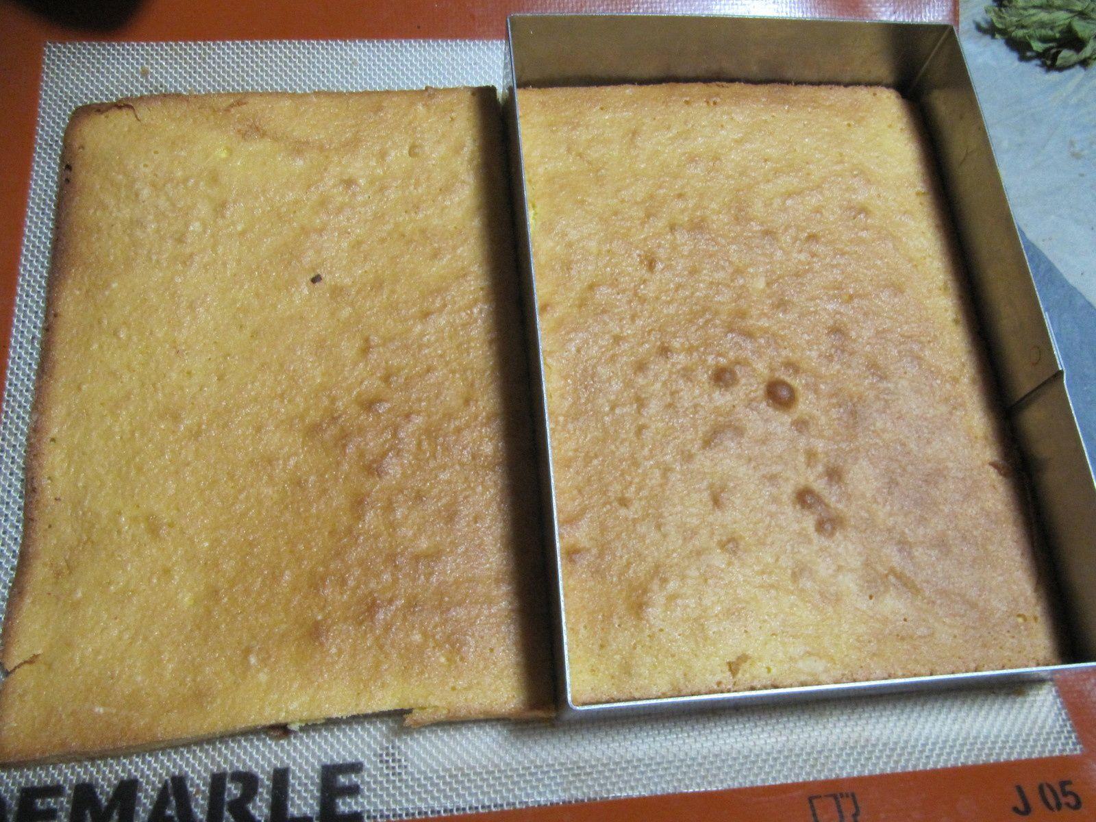 gâteau aux fruits légers et frais