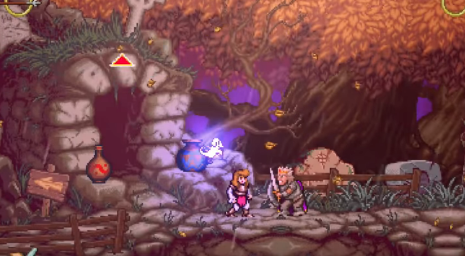 [TEST] Battle Princess Madelyn / Switch