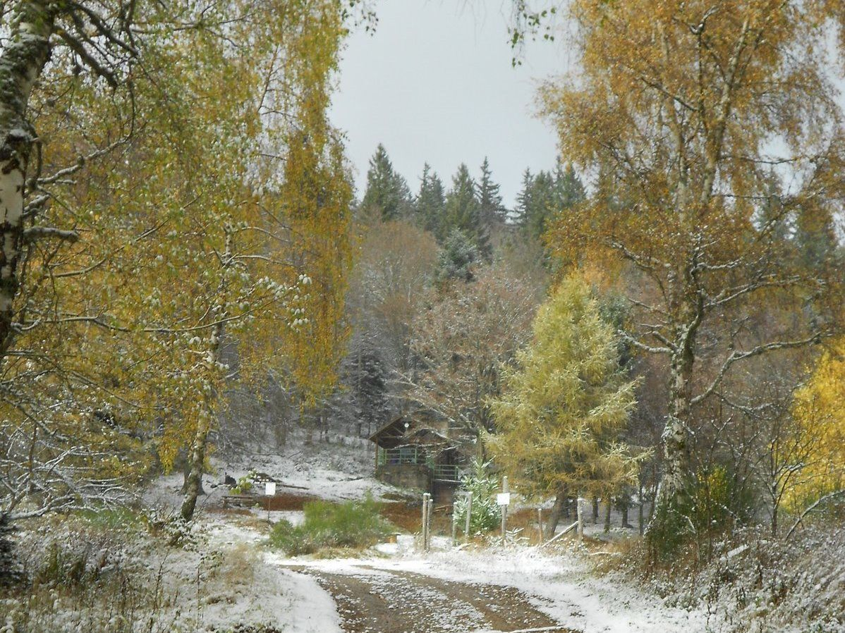 Mercredi 16 novembre - Randonnée autour de Murbach et du vallon de Rimbach