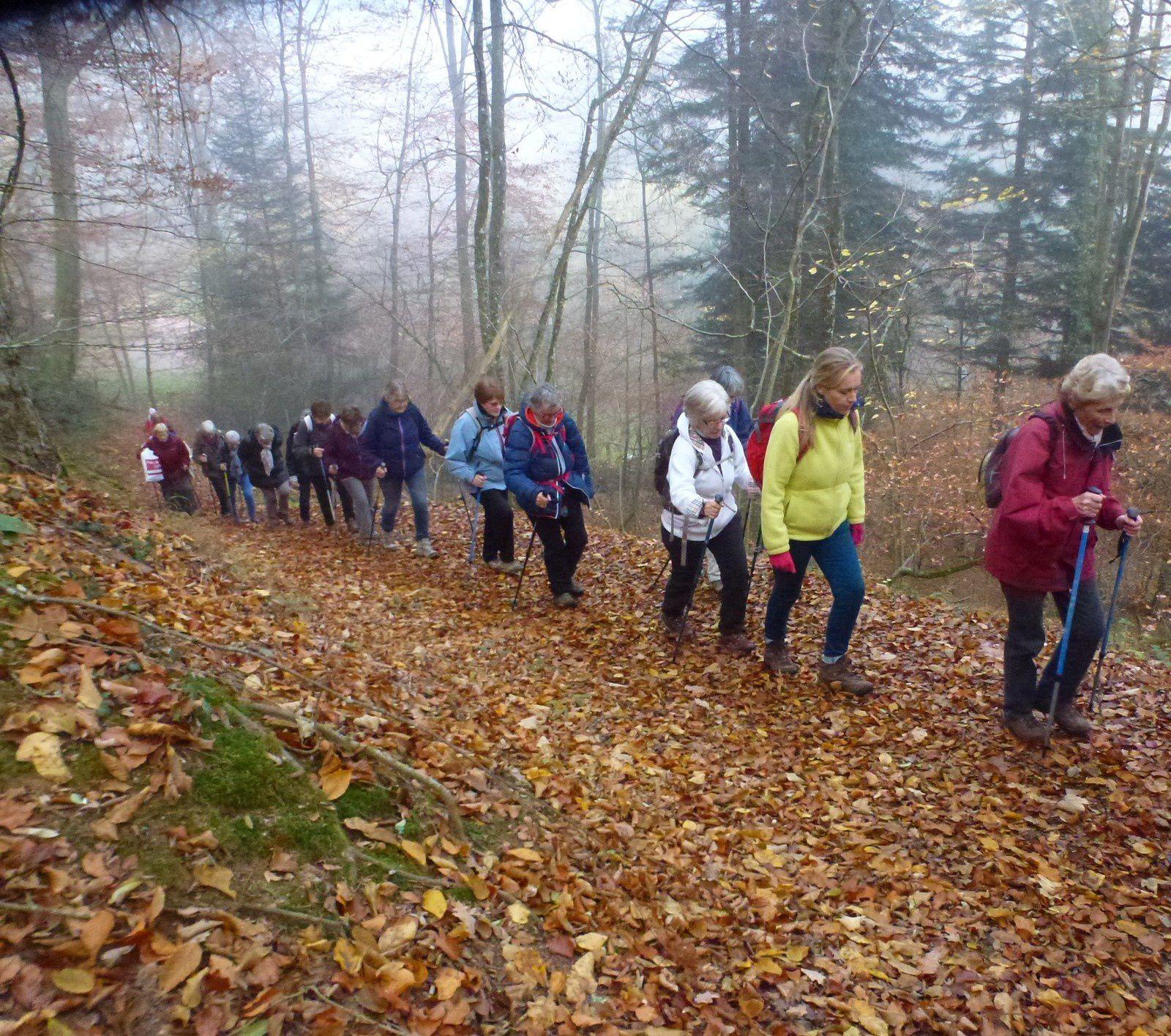 Sortie séniors, c'était le 14 novembre 2018 : Gunsbach sur le sentier de l'eau