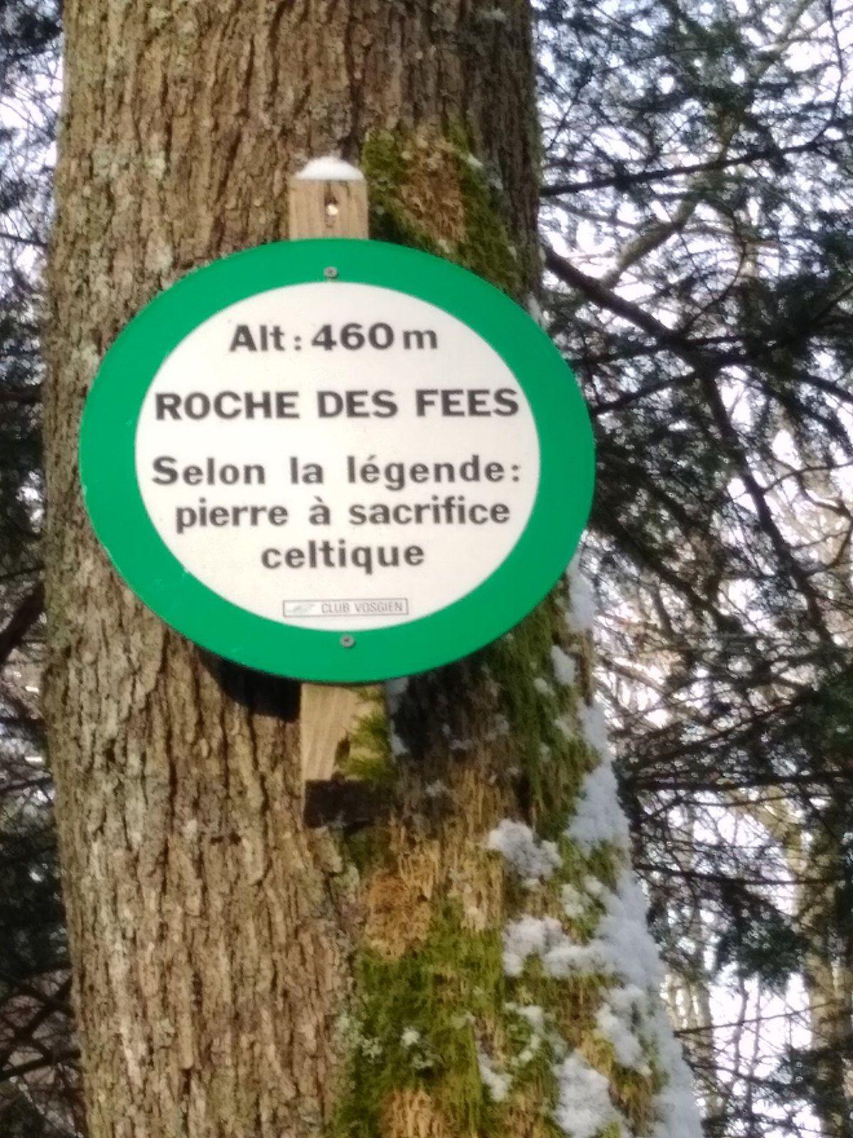 Randonnée vers le Château du Haut–Koenigsbourg - mercredi 6 mars 2019