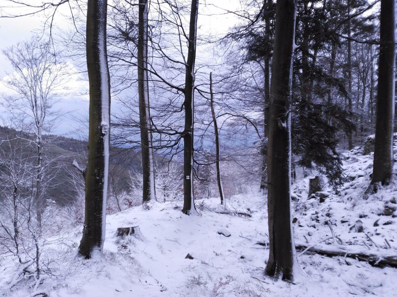 Le massif du Schneeberg, 11 mars 2019