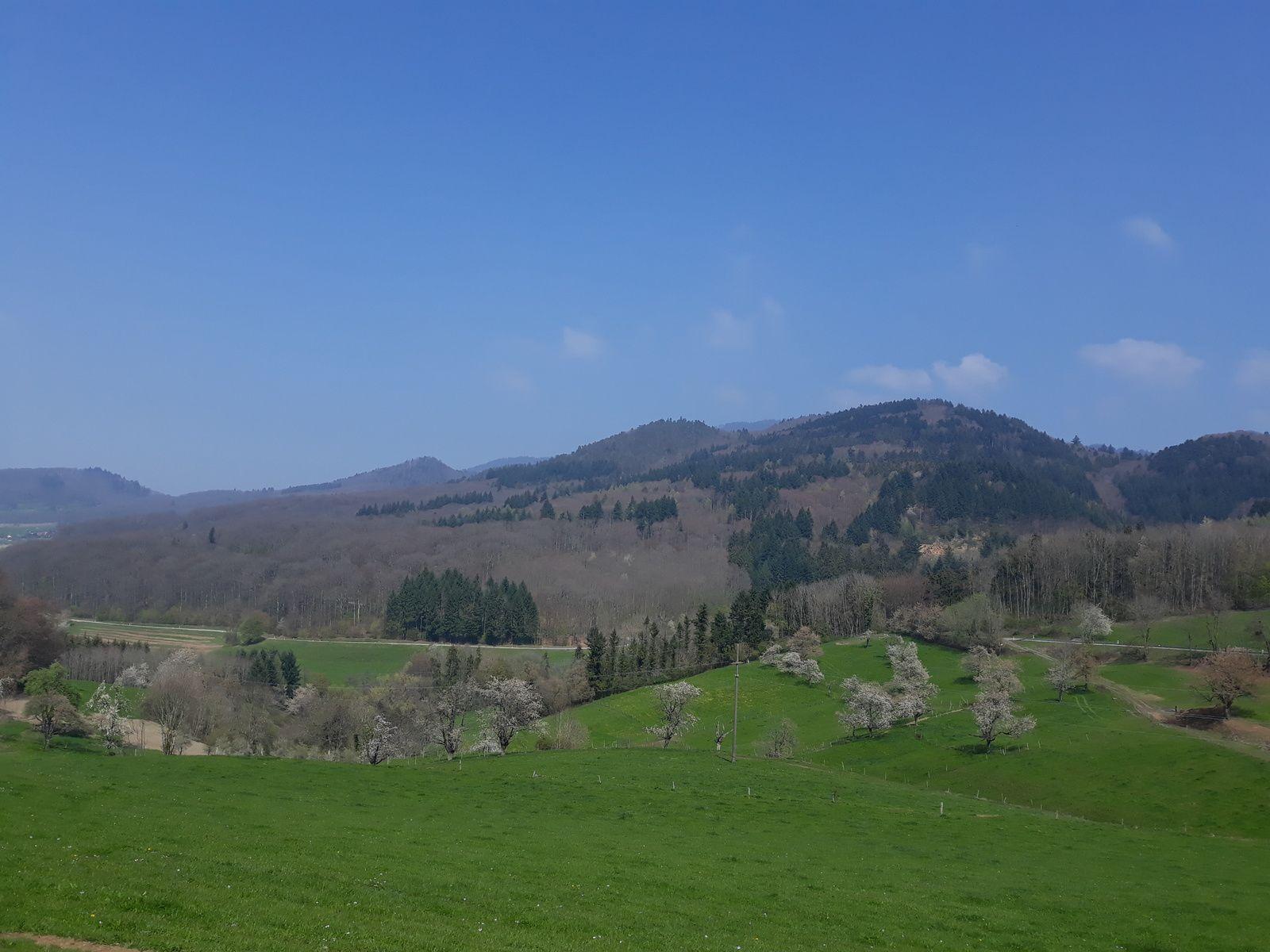 Randonnée dans le Eggenertal (Markgräflerland - Bade Wurttemberg) - mercredi 24 avril 2019