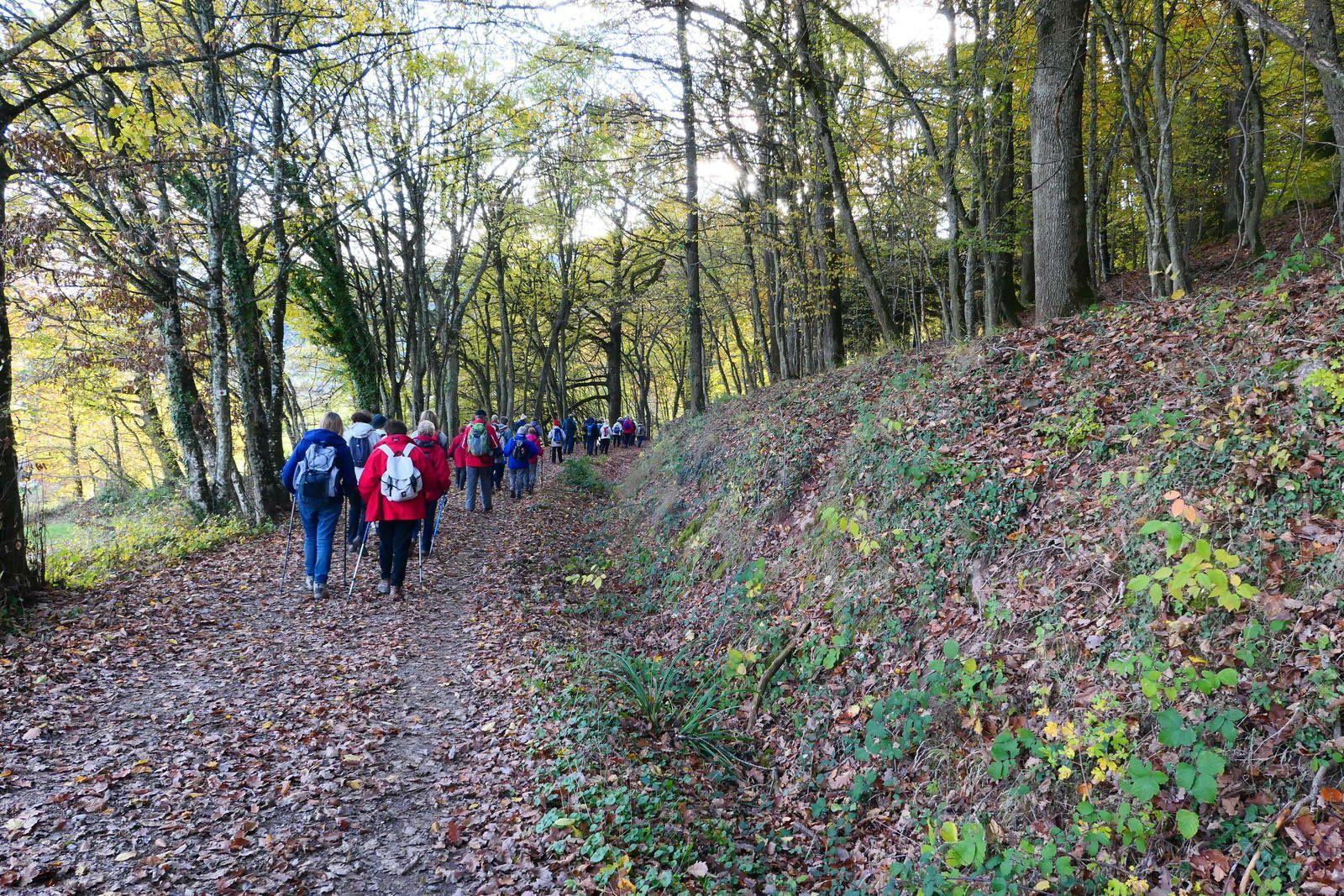 Sortie séniors c'était le 13 novembre 2019 de Soultzmatt à Wintzfelden