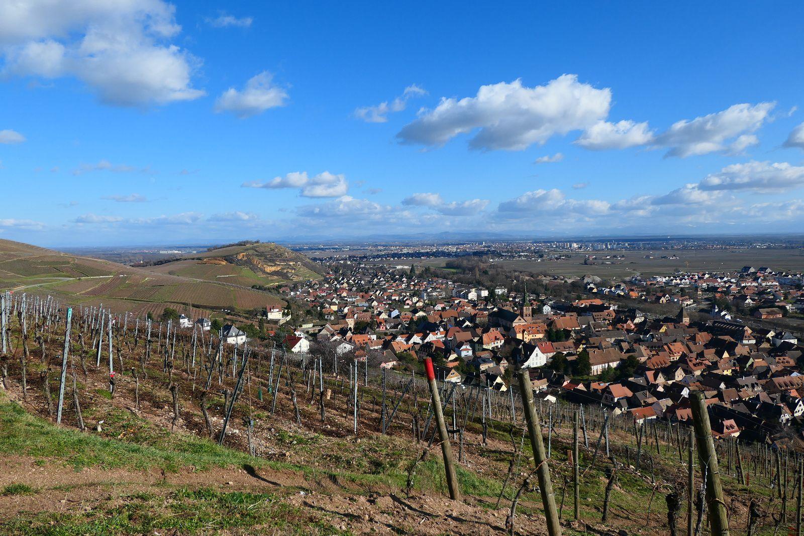 Sortie séniors du 5 fév 2020 Les côteaux du Brand-Turckheim.