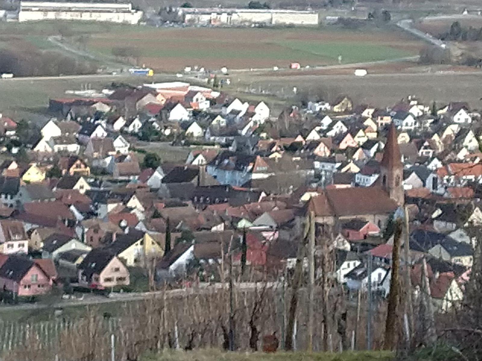 Sortie séniors, c'était le 19 Fev 2020 de Wintzenheim à Wettolsheim