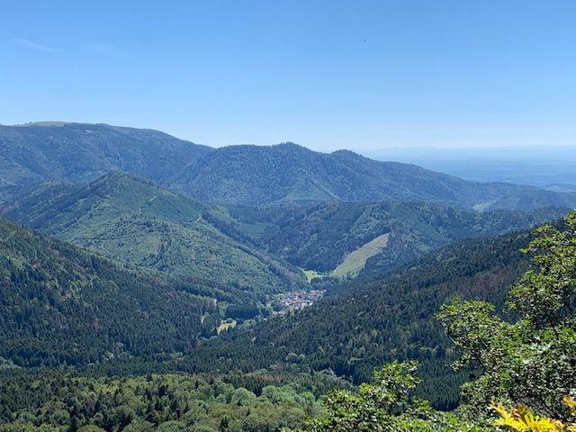 Randonnée de Ermensbach vers le lac du Neuweiher - mercredi 12 août 2020