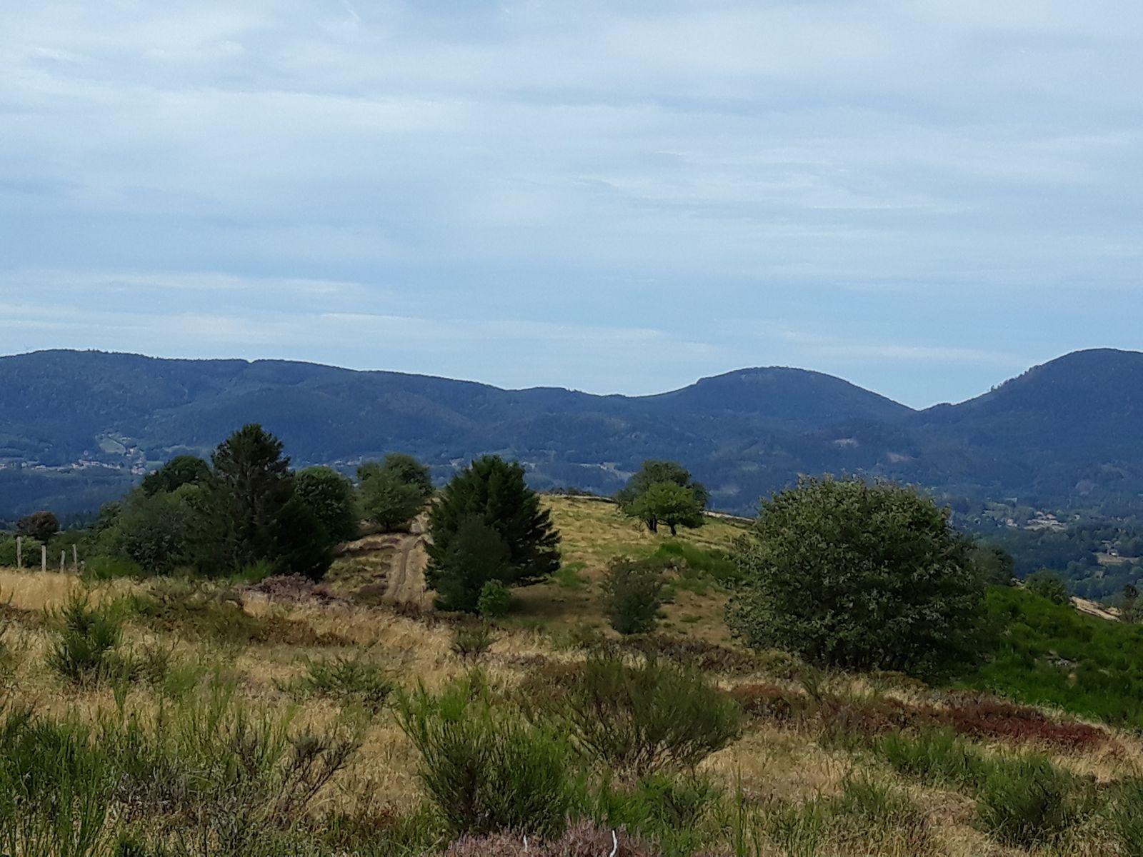 Randonnée dans la vallée de la Chirgoutte et les villages du Ban de la Roche - mercredi 2 septembre 2020
