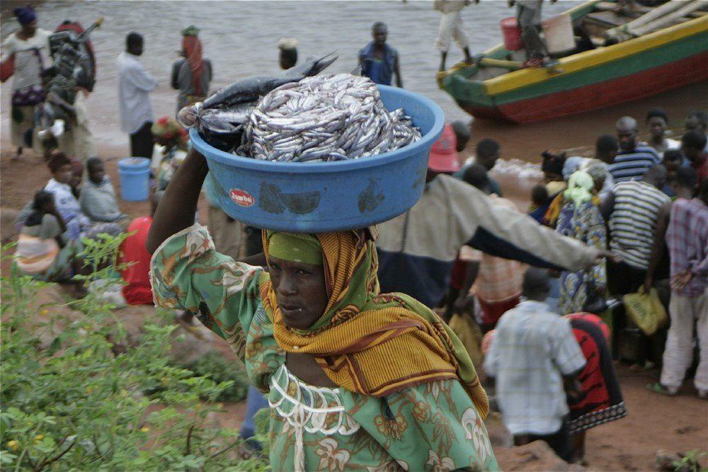 Tres continentes, tres lagos en peligro. El lago Tanganika, el más extenso y antiguo de África, está en peligro.