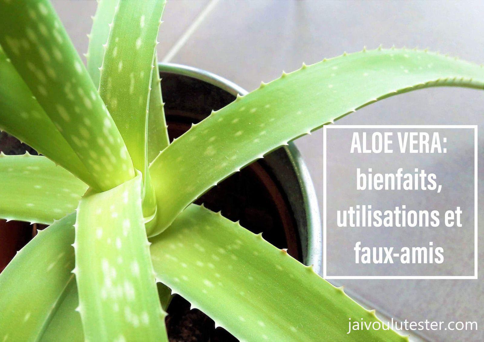 ... l'Aloe Vera: bienfaits, utilisations et faux-amis
