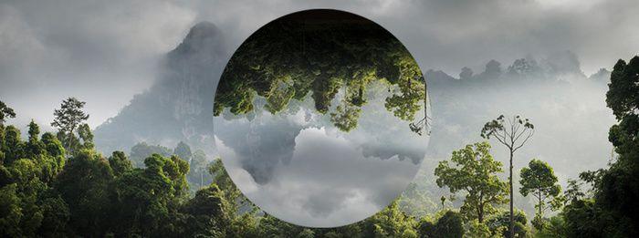 France Télévisions se mobilise demain pour la journée mondiale de l'environnement