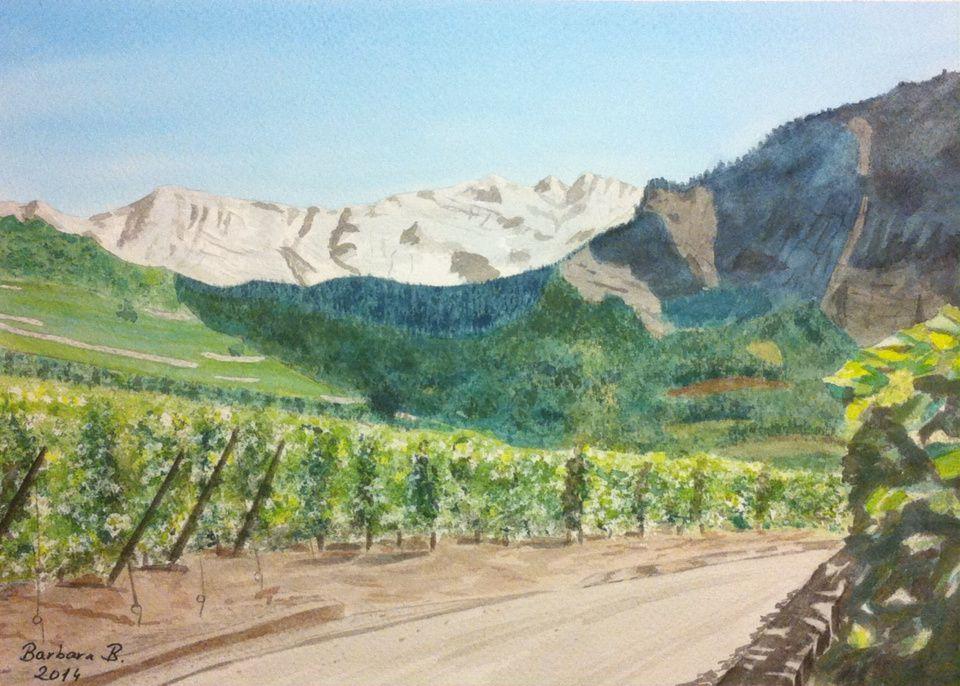 À vendre: Vignes de Saillon