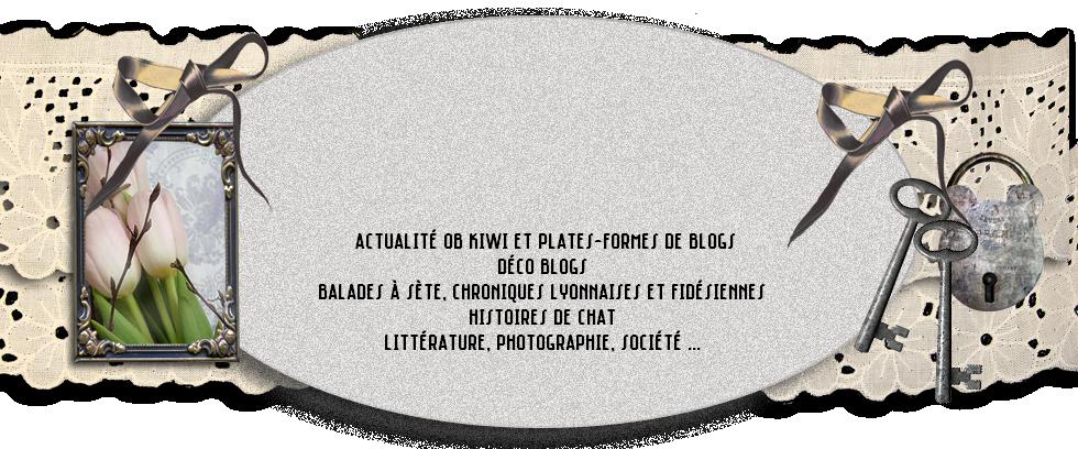 Papier de Verre, le blog de Kiki, Félix et Thaddée ↫