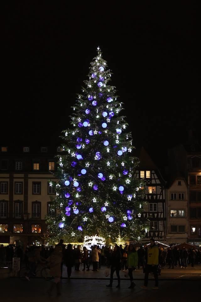 un monument le sapin de no l de strasbourg avents de nicole pierre. Black Bedroom Furniture Sets. Home Design Ideas