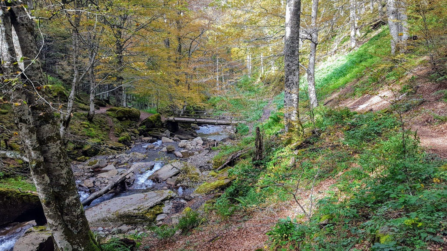 La Passerelle des Piches qui mène à la Chapelle de l'Isard.
