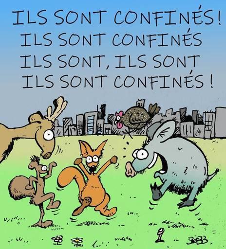 """LES """"BIENHEUREUX"""" DU CONFINEMENT"""