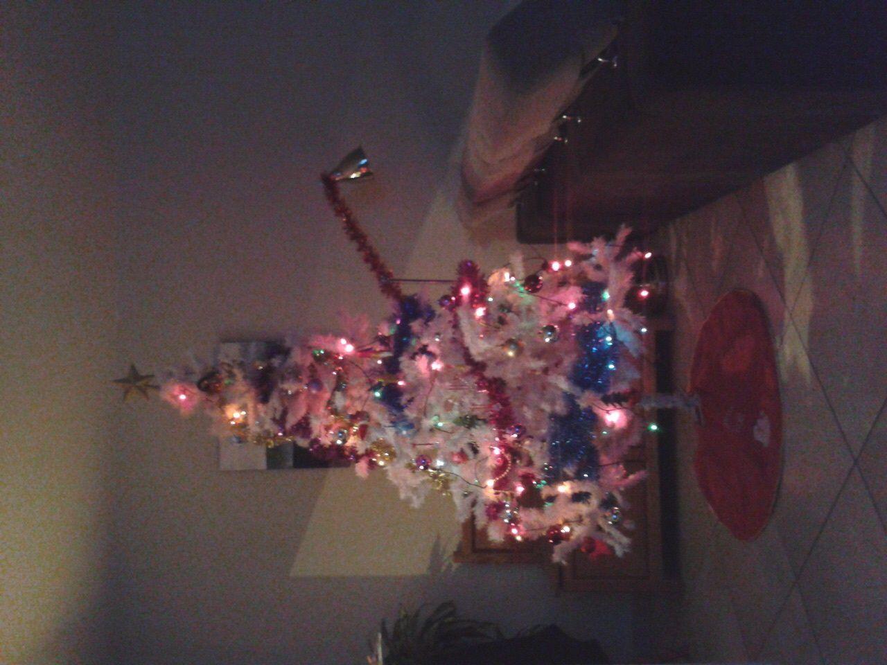 Les surprises du 1er décembre 🎁