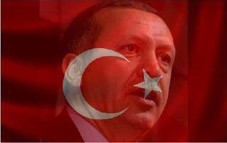 """Le rêve """"sultanesque"""" d'Erdoğan… Sur les débris du rêve des jeunes de Suruç ?"""