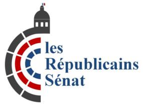 Les sénateurs gaullistes analysent l'élection présidentielle et la législative à venir