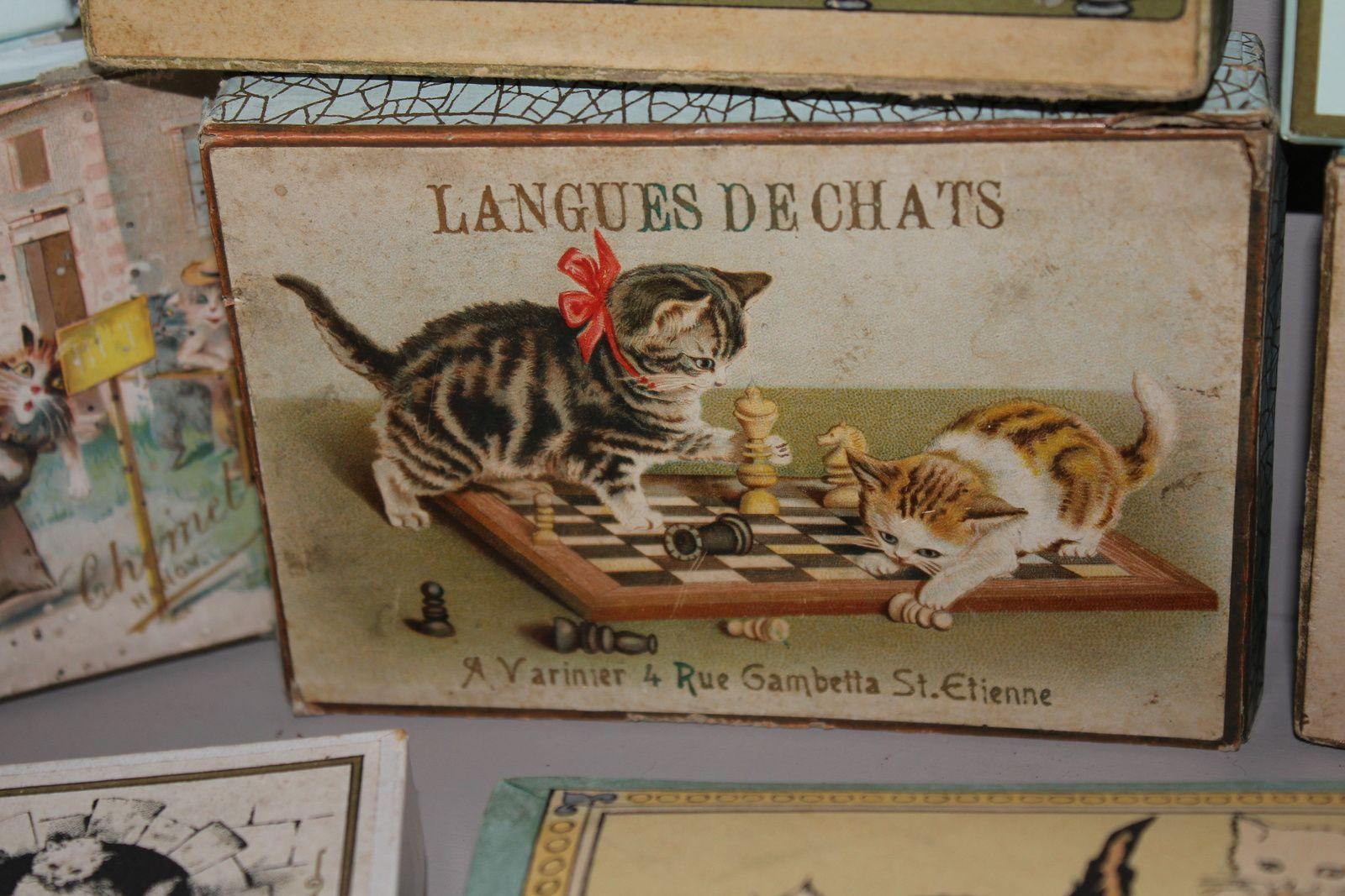 Collectionner les boîtes de langues de chat anciennes
