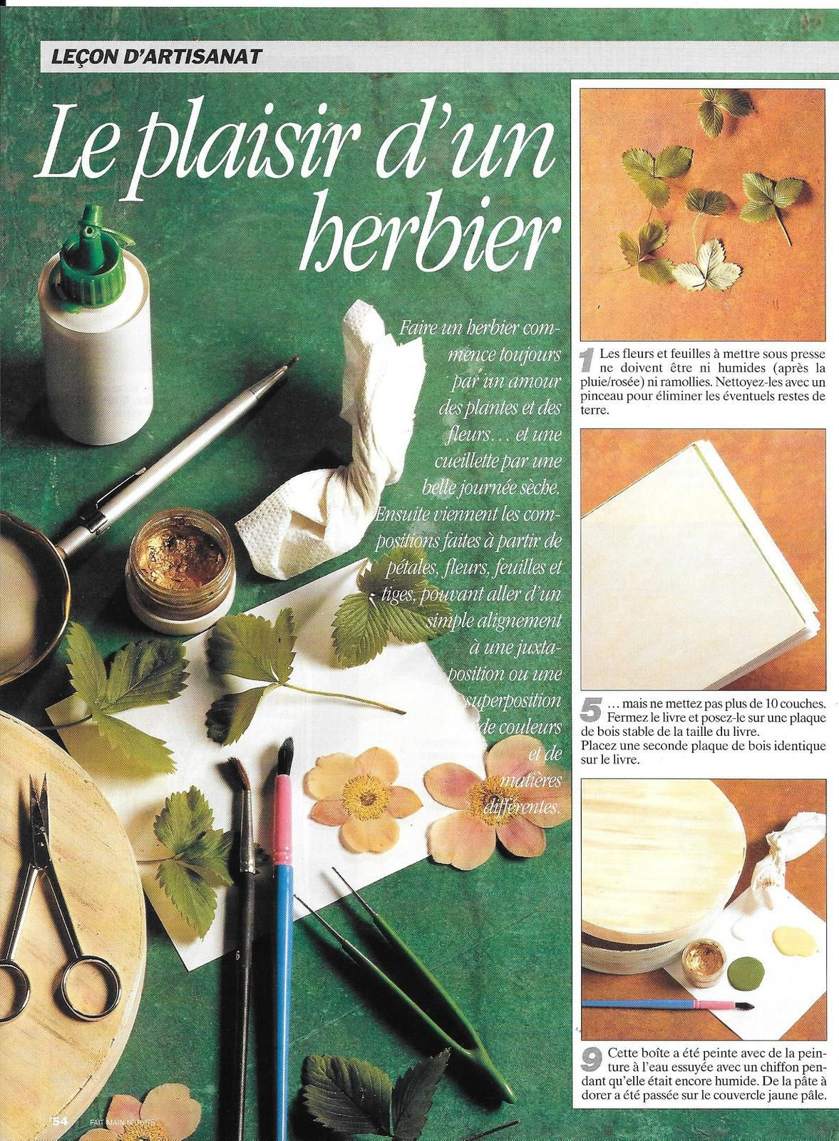 Herbier et une utilisation originale