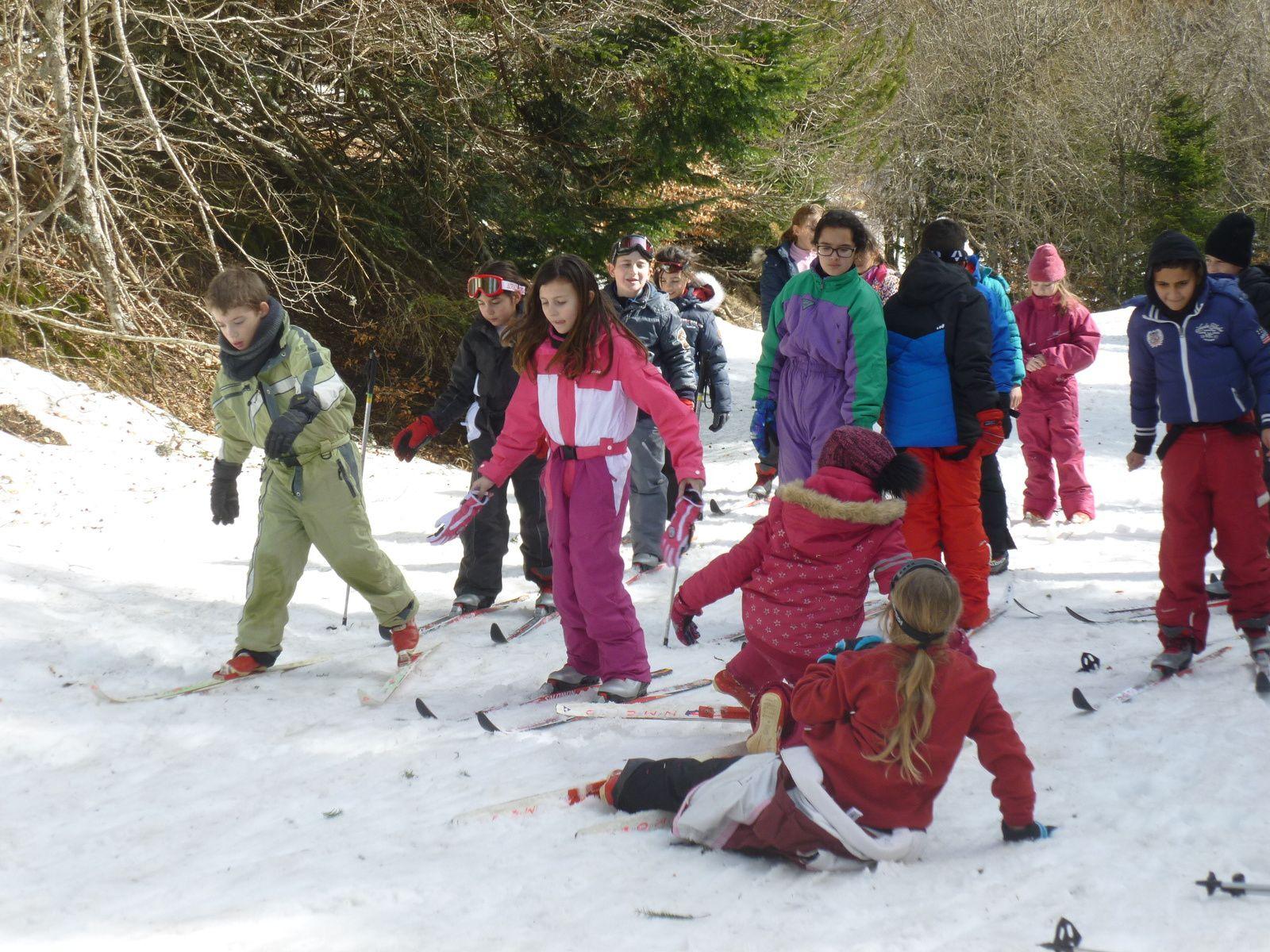 Photos ski de fond Aigoual jeudi 23 février CM1 et CM2