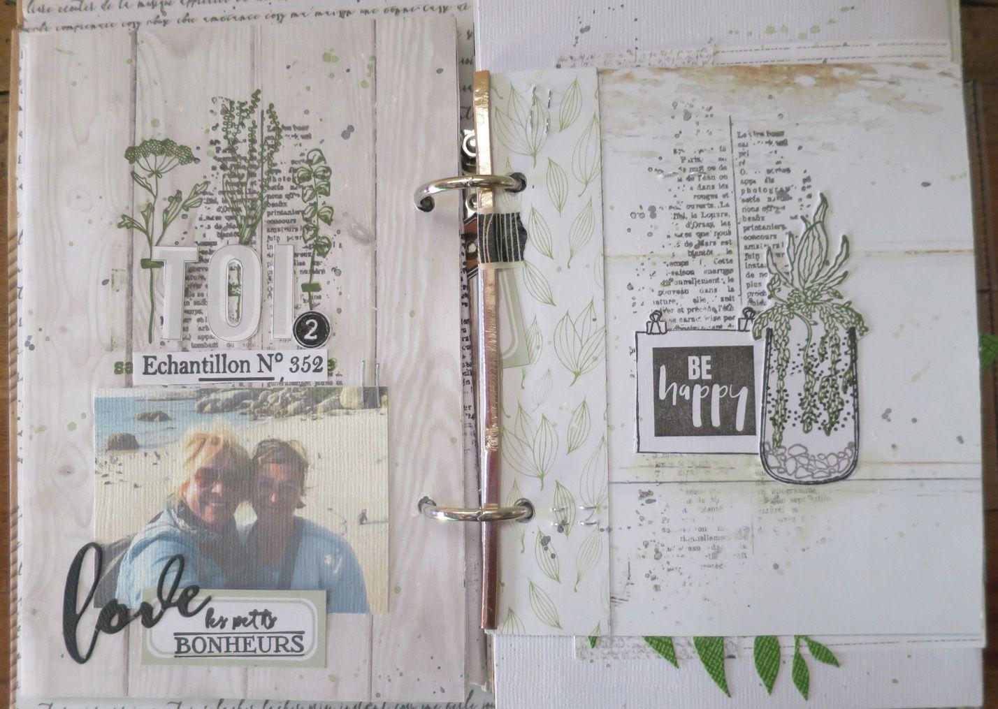 Cours Mag de Rose Anis (Mini Green Attitude)