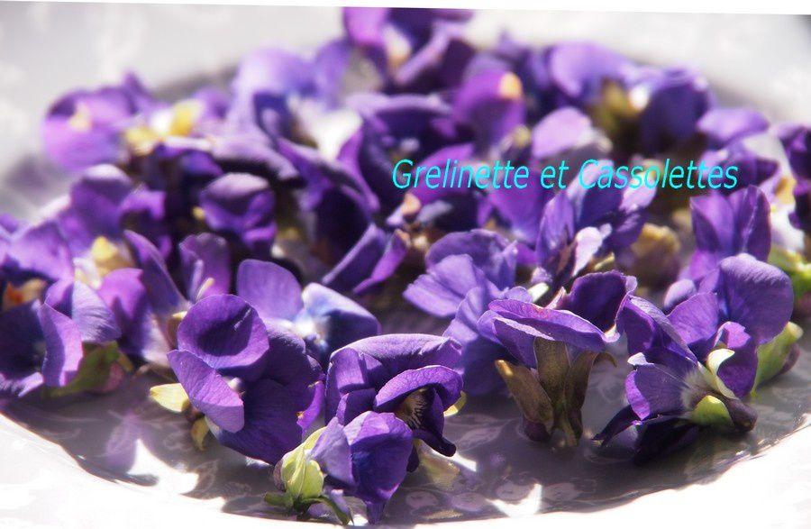 Violettes du jardin Cristallisées