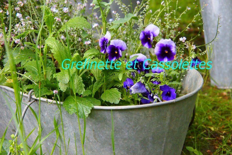 Tour au jardin de Mai