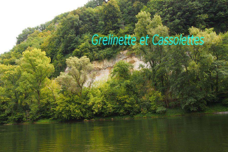 Descente de la Dordogne : Canoë