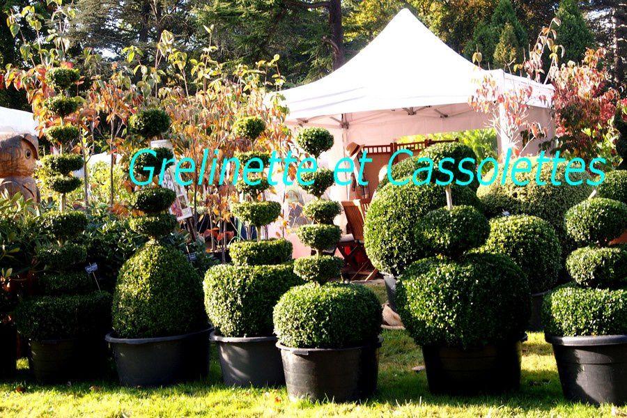 Les Journées des Plantes de Courson, Automne 2014