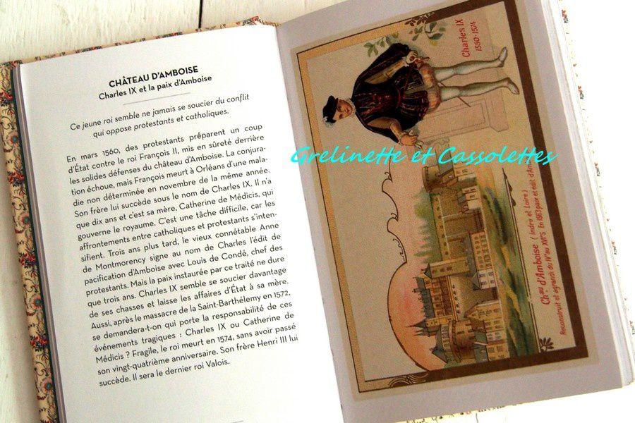 Le Petit Livre des Châteaux de la Loire