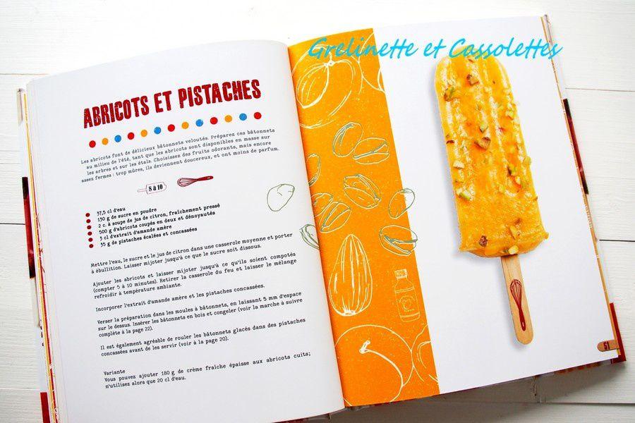 Bâtonnets Glacés : 50 Recettes Givrées