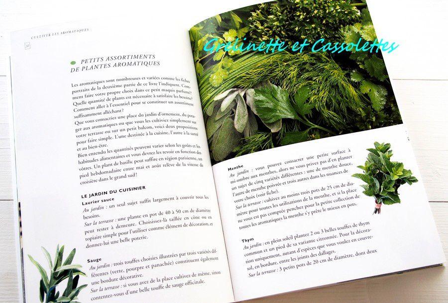 Plantes Aromatiques, Comment les Choisir et les Cultiver facilement